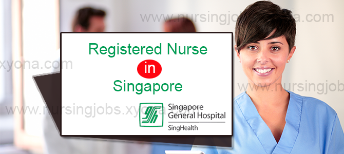 Registered Nurse  in Singapore
